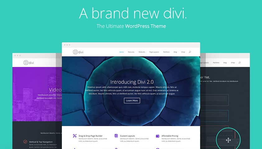 Download Elegant Themes - Divi: Just $8